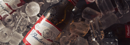 Modal_04-budweiser-long-neck-combo-2